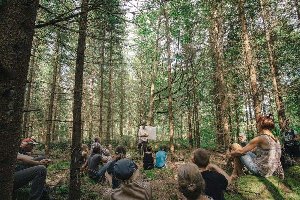 Into_the_woods_FB_joakimjarleklint-00605